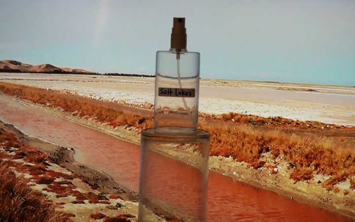 salt water pink 02